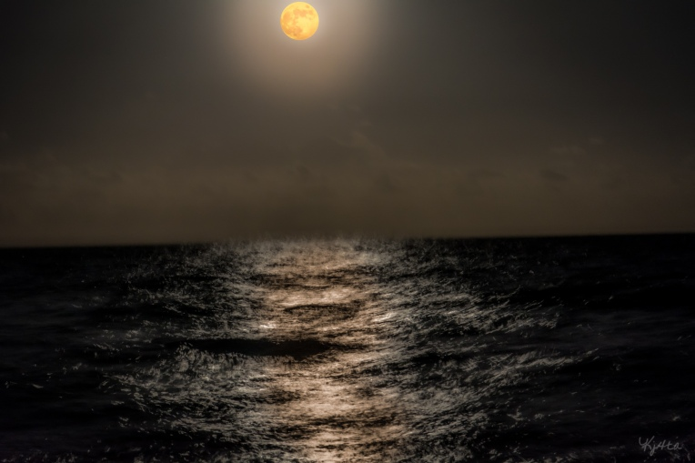 Moon's Pull