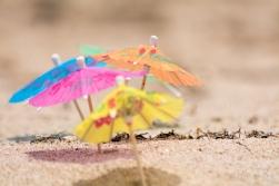 Umbrella Beach 2